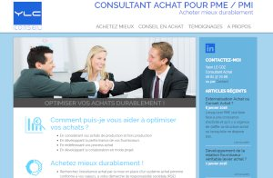 YLC CONSULTANT ACHAT